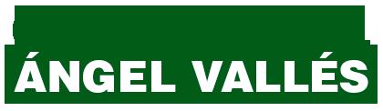Ángel Vallés